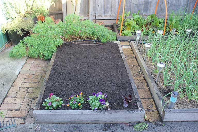 compost-flattened