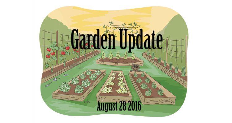 garden-update